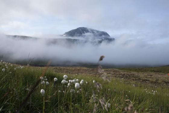 Icelandic Scenery - mist rolls in.